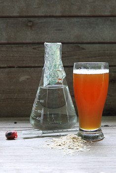 Learn the science of beer brewing.