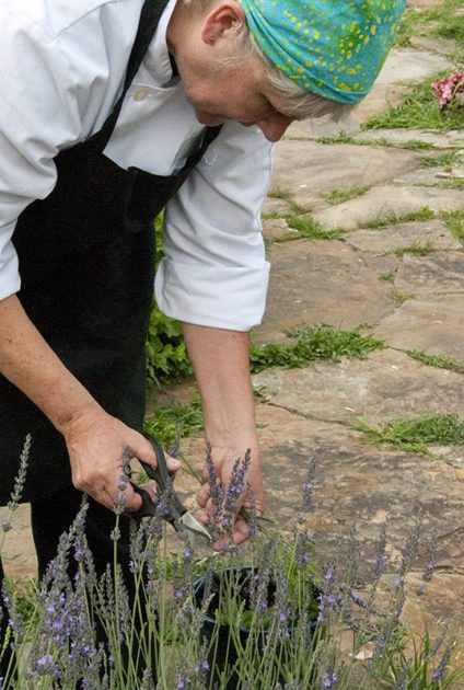 Maggie gathers lavender in the Folk School Herb Garden