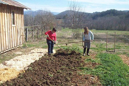 Work/Studies turn in cover crops to prep the beds for planting.
