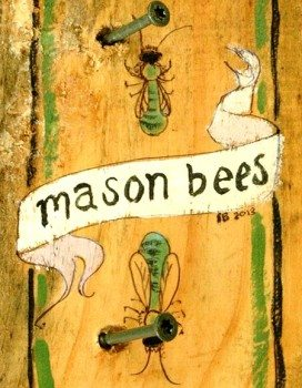 Brasstown mason bees have stylish new homes at the Folk School thanks to Sara Boggs, the Work/Studies, and Joe B.