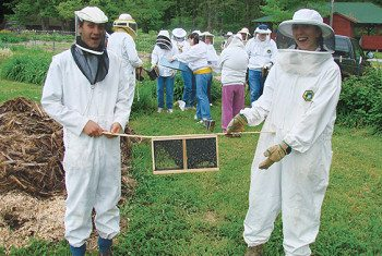 A new package of bees arrives at the school's garden.