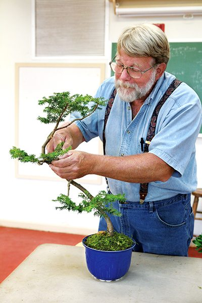Ryan_Tim_GA_Bonsai_9424_ret