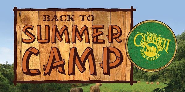 Back to Summer Camp