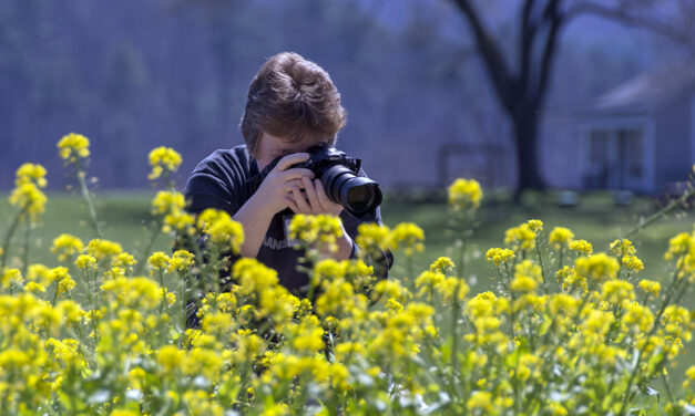 Photography Workshops, Summer and Fall 2020