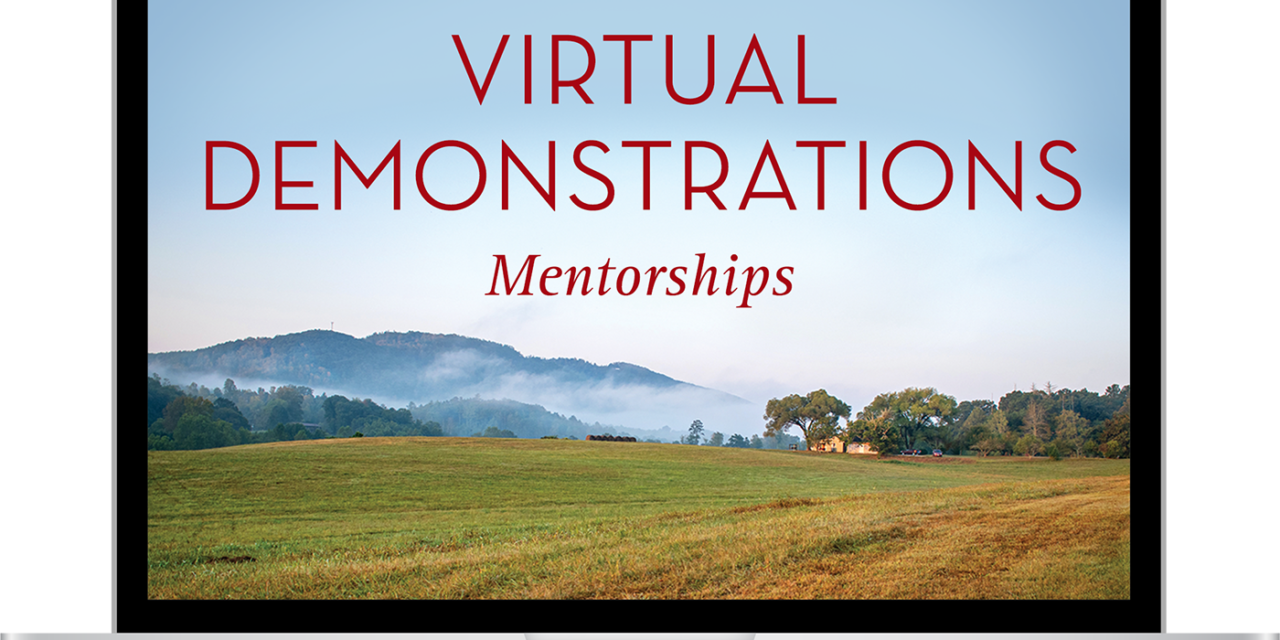 Traditional Craft Mentorships: Virtual Demonstrations